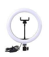 Профессиональная кольцевая светодиодная LED лампа 30см Ring Fill Light, селфи кольцо (без штатива)
