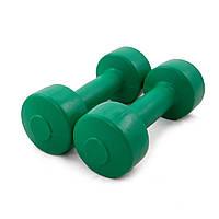 Гантели для фитнеса OSPORT Титан 1 кг (FI-0094-1)