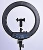 Кольцевая лампа 45 см с чехлом RL 18T. ГАРАНТИЯ! Кільцева лампа з чохлом 45см., фото 2