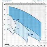 Насос центробежный Pedrollo CPm 160B (Италия), фото 3