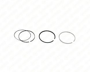Комплект поршневих кілець на Renault Dokker 2012-> 1.5 dCi NPR-NE - 120038001400