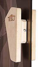 Дверь для бани и сауны Tesli Мечта 1900 х 700, фото 2