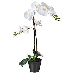 Искусственное растение в горшке IKEA FEJKA орхидея 12 см 802.859.09