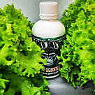 100 мл B-52 Booster - Витаминный комплекс для растений от FloraGrowing, фото 3