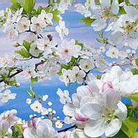 Фотошпалери, квіти, дерево, Весна, 16 аркушів, 194х268 см
