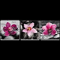 Триптих на полотні, картина, 30см*30см*3шт, квіти, чорний, рожевий,