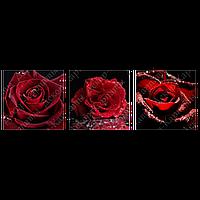 Триптих на полотні, картина, 30см*30см*3шт, чорний, червоні, квіти, троянда