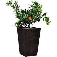 Горшок для цветов Large Rattan Planter 145 л.
