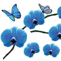 Наклейка, орхидея синяя, бабочки, интерьерная Label №11