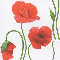 Наклейка, маки, красные, интерьерная Декор №4
