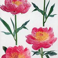 Наклейка, пион, цветы, декупаж,   интерьерная Декор №8