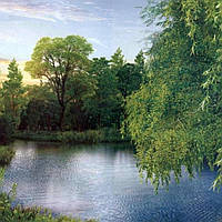 Фотообои, Ива над рекой, 16 листов, 196х280 см, фото 1