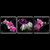Триптих на полотні, картина, 30см*30см*3шт, квіти, орхідея