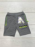 Трикотажные шорты для мальчиков. 134 рост.