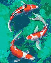 Картина за номерами риби 40х50 Коі