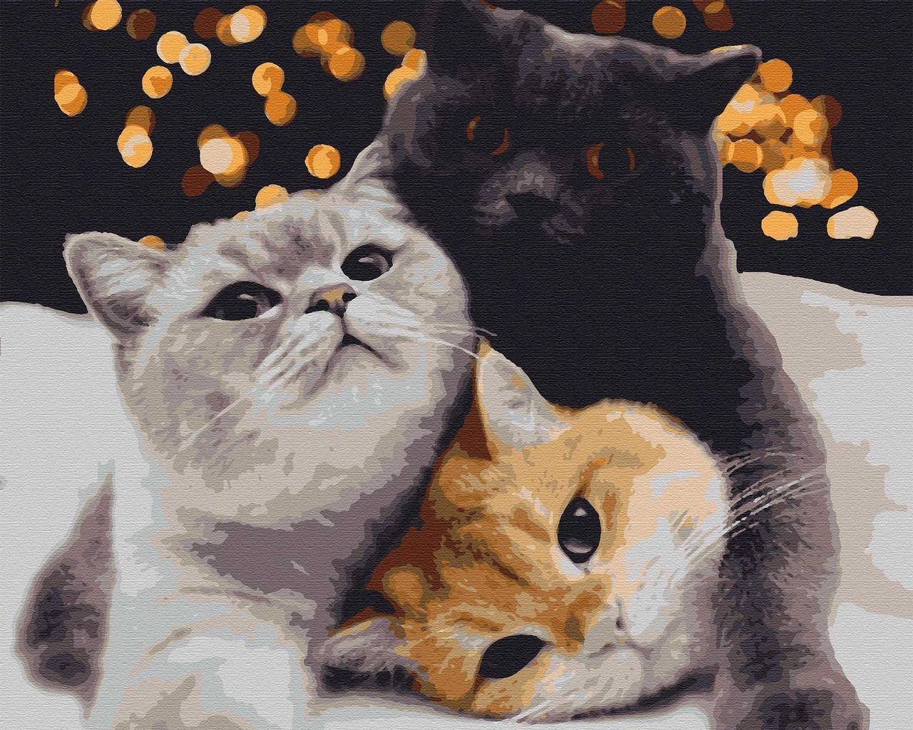 Картини за номерами тварини кішки 40х50 Вечірка