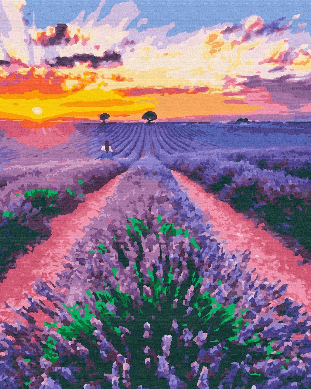 Картина по номерам природа лаванда 40х50 Лавандовые Мечты