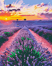 Картина за номерами природа лаванда 40х50 Лавандові Мрії