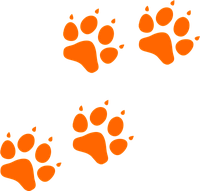 Носки для собак с  рюшей  S