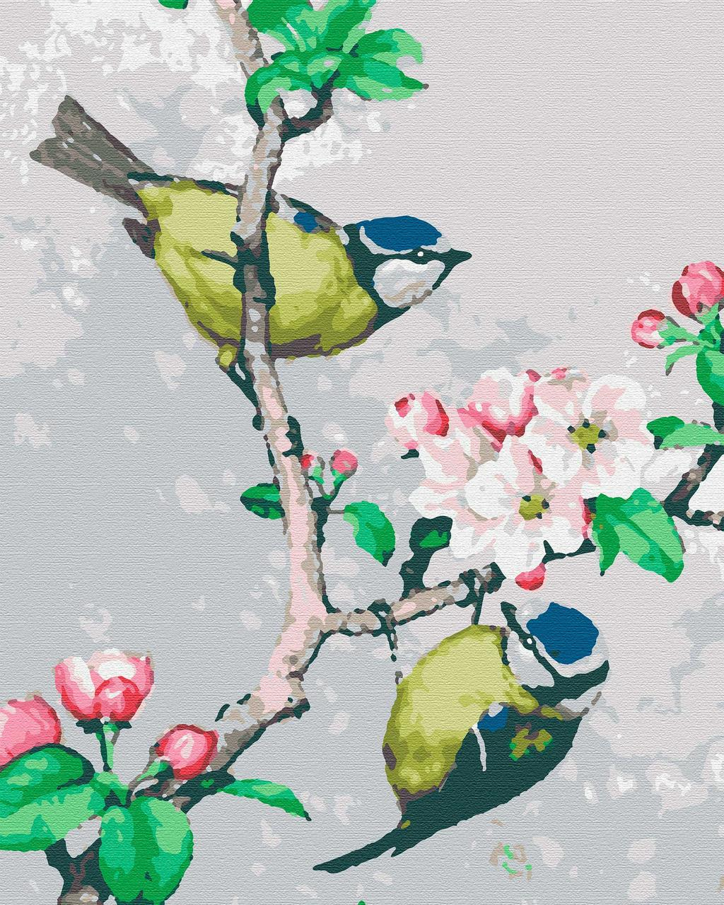 Картина по номерам птицы 40х50 На Яблоне