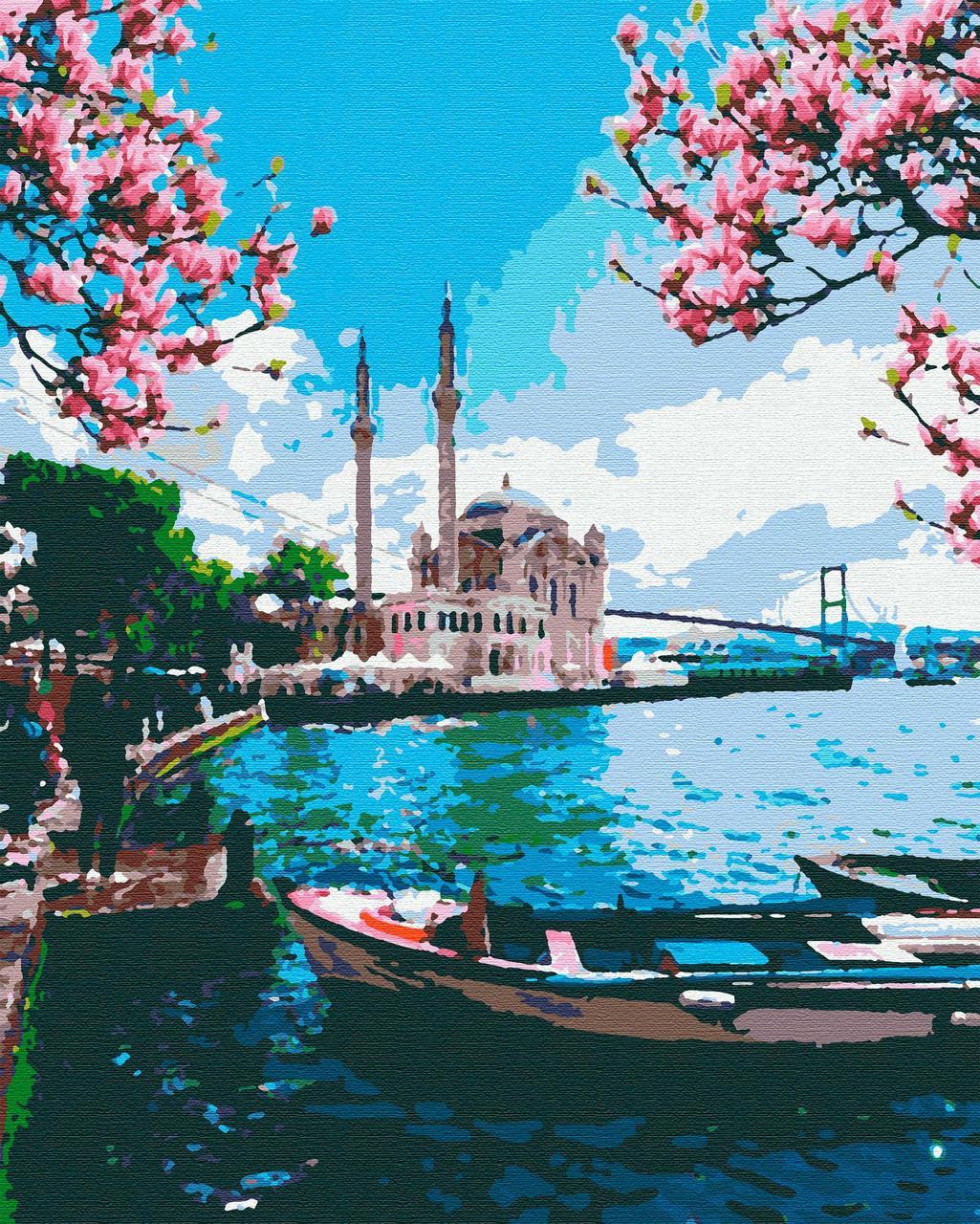 Картина по номерам города 40х50 Живописный Босфор