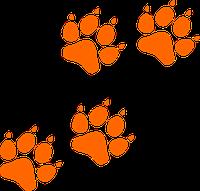 Носки для собак с рюшей L