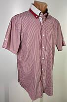 Чоловіча сорочка бренду MODELY COLLECTION Розмір L ( Я-189), фото 2