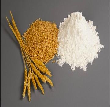 Пшенична клейковина (глютен)