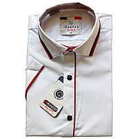 Шкільна біла сорочка з коротким рукавом на кнопках для хлопчика 134-152 зросту