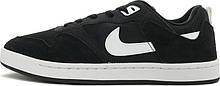 Кеды мужские Nike Sb Alleyoop, Черный, 43,5