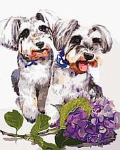 Картина по номерам Собачки с гортензией 40*50см Brushme  Терьер Пес Собаки