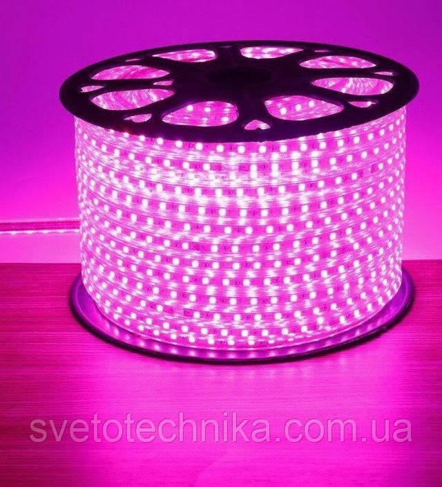 Герметичная светодиодная лента 220V 120 диод/м. розовый свет