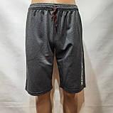 50,52,р. Шорты мужские трикотажные до колена х/б темно-серые, фото 2