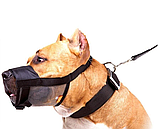 Намордник нейлоновый Dog Extremе №3 регулируемый с сеткой, обхват по морде 25-34 см для собак 4322, фото 2