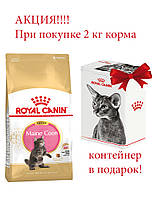 АКЦИЯ!!! Royal Canin Maine Coon Kitten 2 кг + контейнер для корма