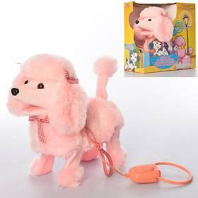 Собака MP 2131 дист.керув., ходить, ворушить головою та хвостом, муз., бат., кор., 25,5-25,5-12см.