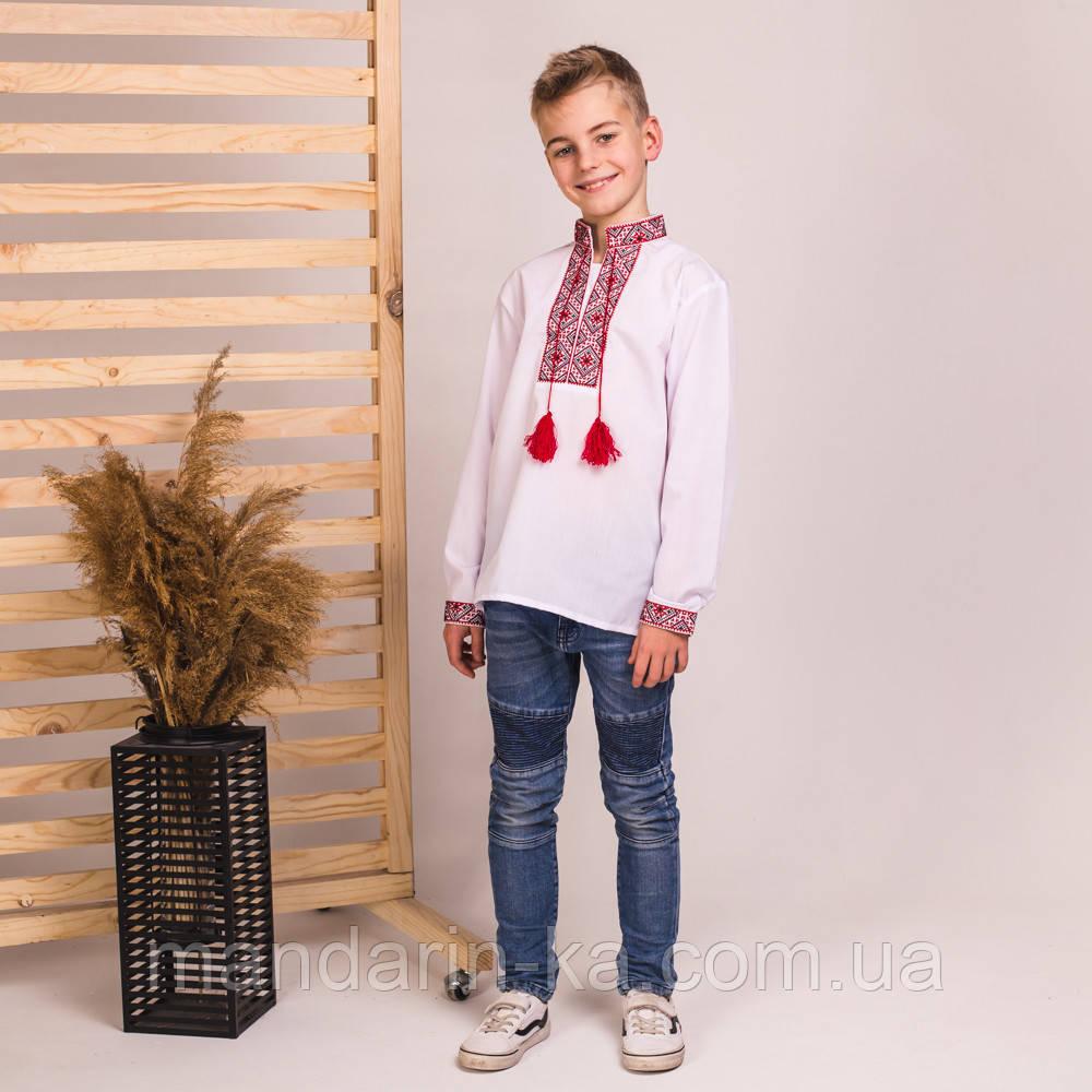 Дитяча вишиванка для хлопчика з червоною вишивкою