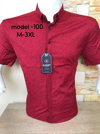 Сорочка короткий рукав G-Port (model*100) з принтом, фото 2
