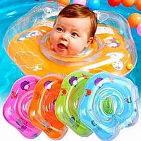 Ванночка или круг для купания?