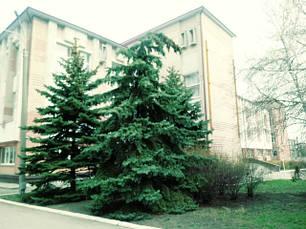Защитное заземление электроустановок для Столовой Университета МВД в Днепре 2021 год.