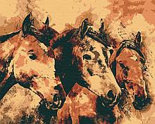 Картини за номерами тварини коні 40х50 Вільні