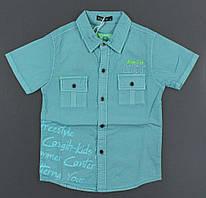 {есть:12 лет 152 СМ,14 лет 158 СМ,6 лет 116 СМ,8 лет 128 СМ} Рубашка для мальчиков F&D, Артикул: 5057-бирюза