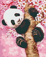 Картини за номерами тварини панда 40х50 Сніжок