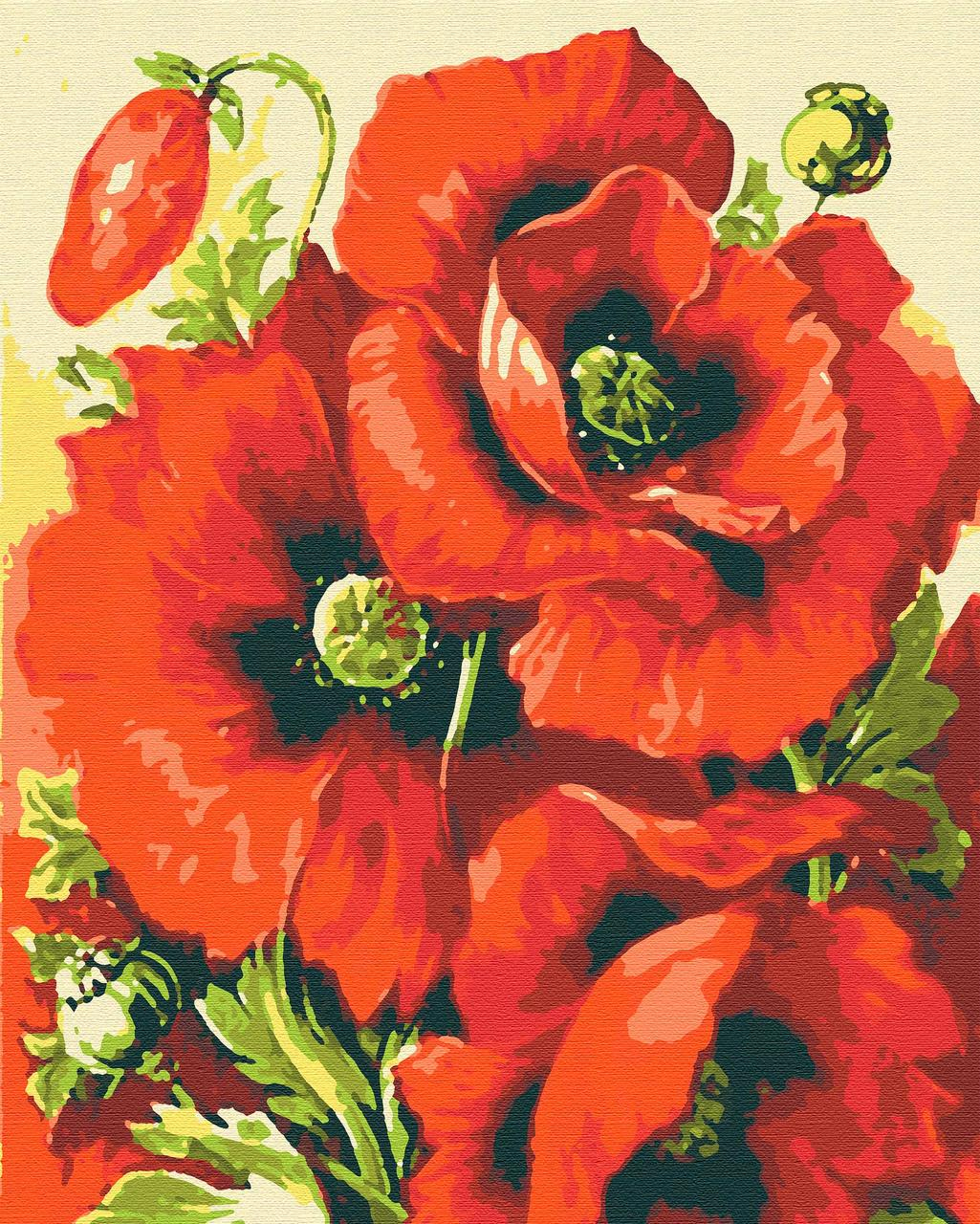 Картини за номерами квіти маки 40х50 Маки