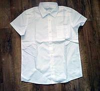 Smart start Германия новая белая рубашка на 11-12 лет с коротким рукавом