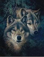 """Алмазная Мозаика Волк"""" 40*50 см полная закладка"""