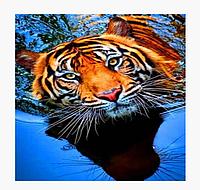 Алмазна картина Тигр 40 на 50см
