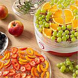 Сушки для фруктов и овощей Sencor SFD742RD (6316203), фото 8