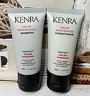 Набор шампунь и кондиционер для окрашенных волос KENRA Color Maintenance
