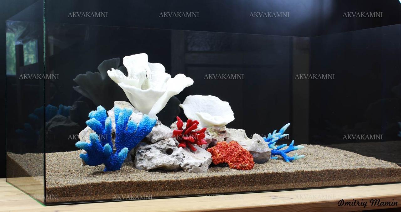 Композиція К58 для акваріума з коралами (від 140л)